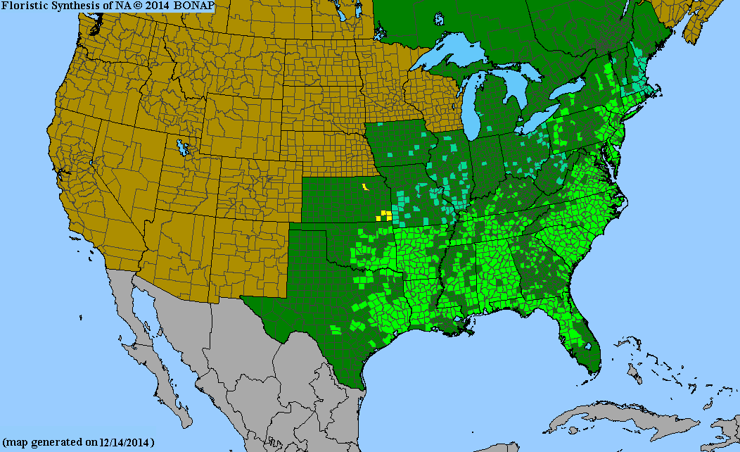 County distribution map of Lonicera sempervirens - Trumpet Honeysuckle