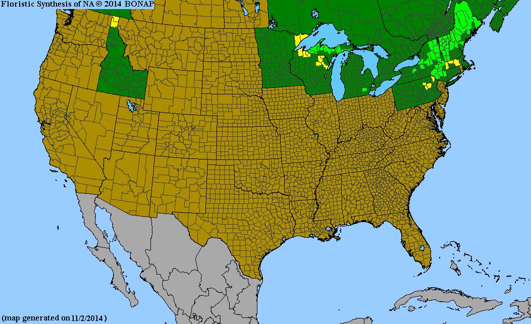 2013 Bonap North American Plant Atlas Taxonmaps